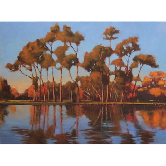 Philip Beadle Victoria Lake, Hagley Park, Oil On Canvas 102x76cm