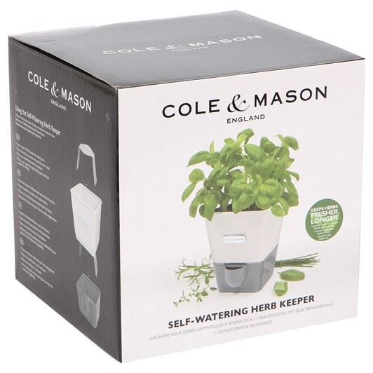 Cole & Mason Self Watering Herb Keeper Single