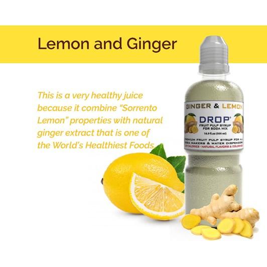 Oh Bubbles Lemon & Ginger Fruit Pulp Mix 500ml