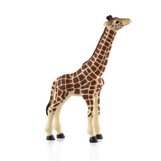 Mojo Giraffe Calf