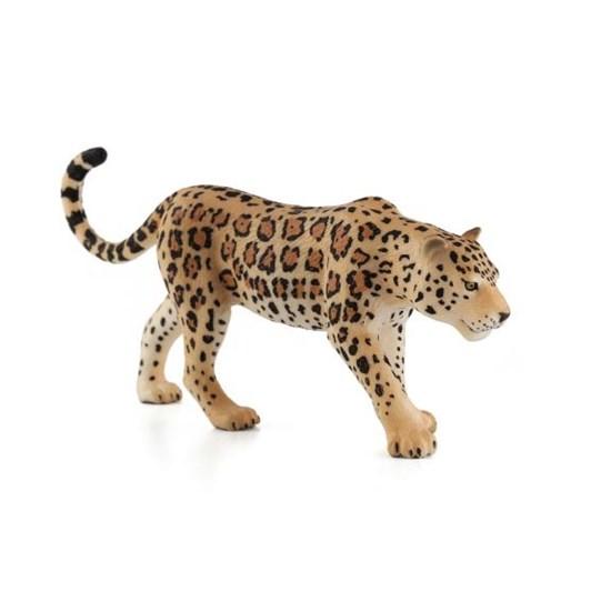 Mojo Leopard