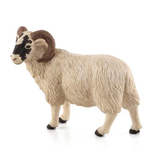 Mojo Black Faced Sheep - Ram