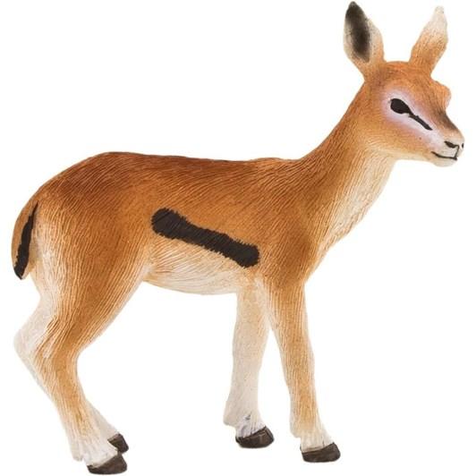 Mojo Thomsons Gazelle Fawn