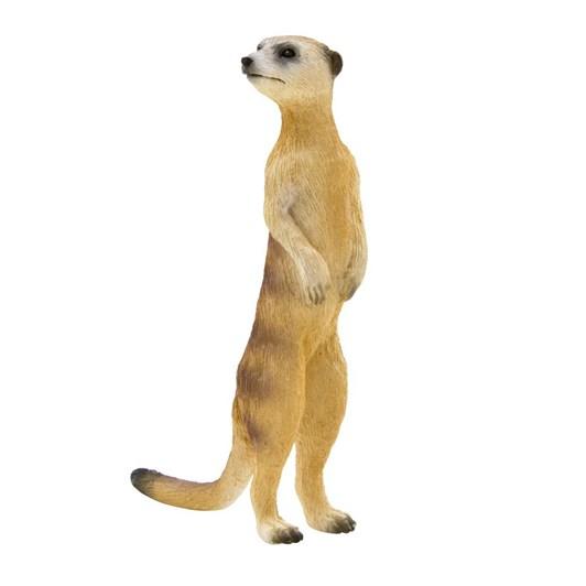 Mojo Meerkat