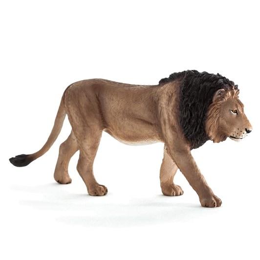 Mojo Lion