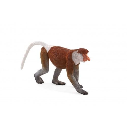 Mojo Proboscis Monkey