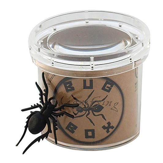 Seedling Magnifying Bug Box