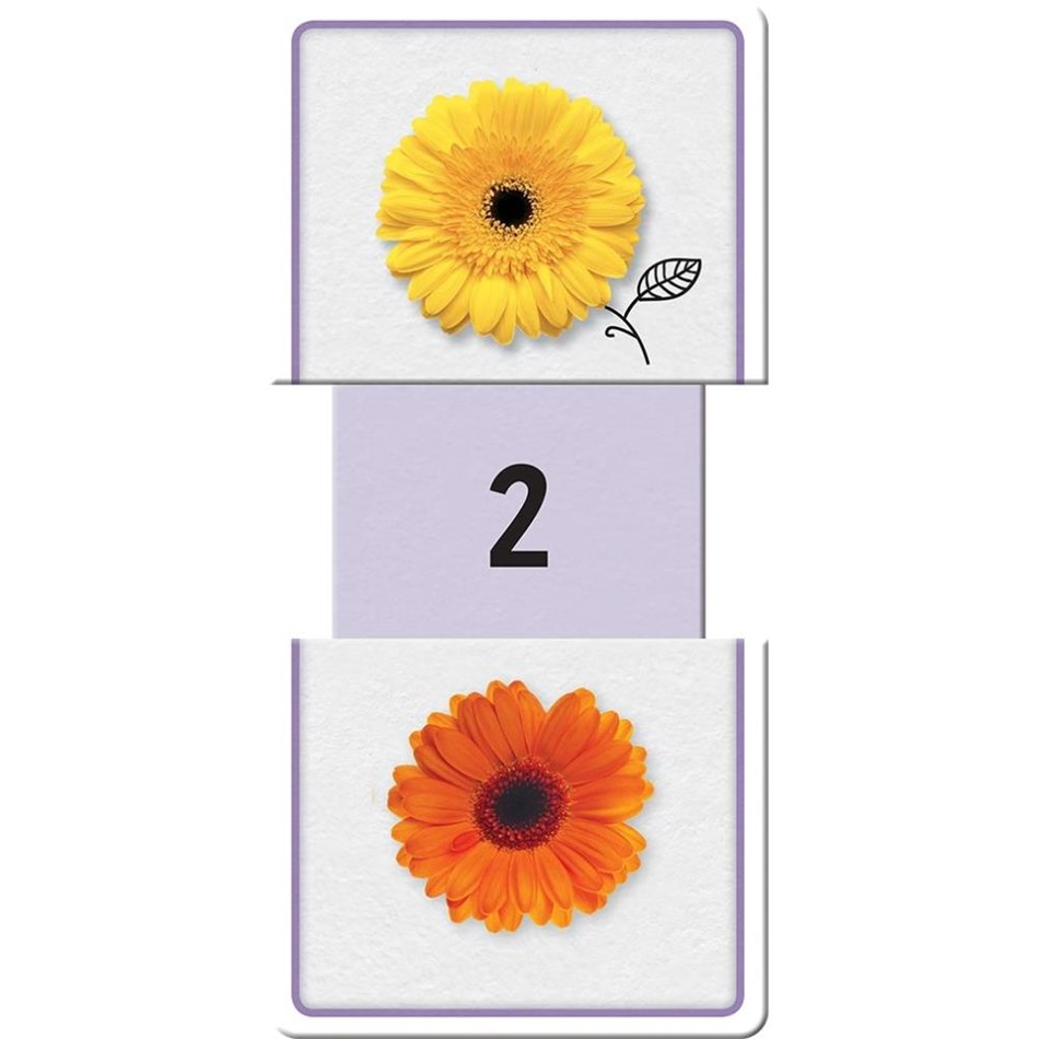 Little Hand Building Blocks Slide & Learn Flash Cards - Numbers  -