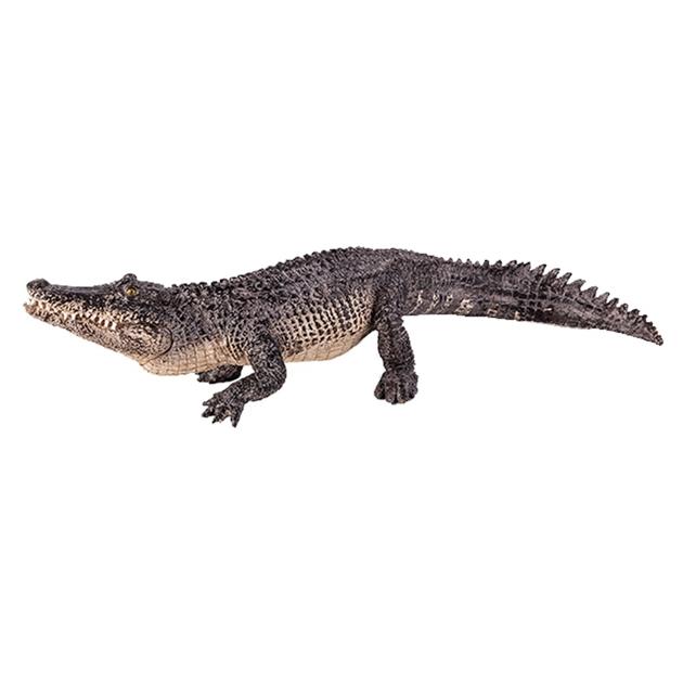 Mojo Alligator -