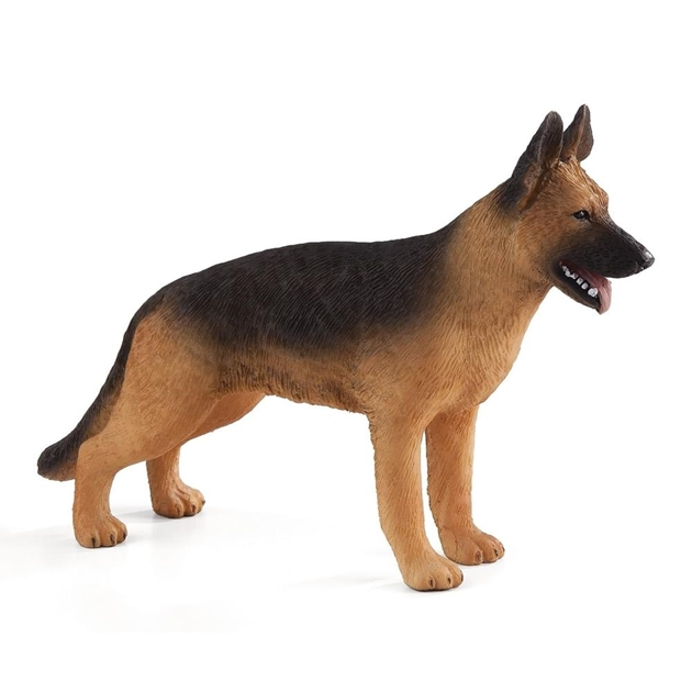 Mojo German Shepherd -