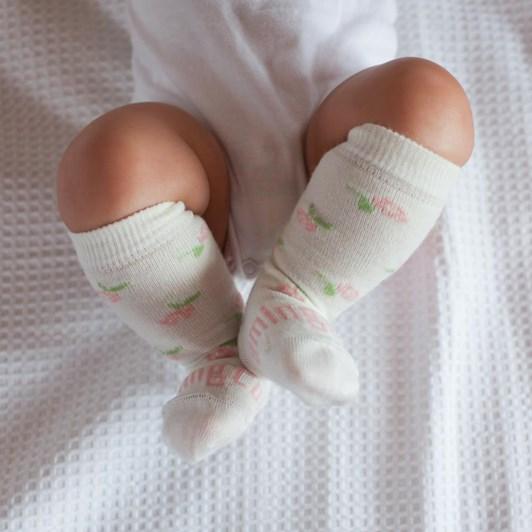 Lamington Socks Rosie
