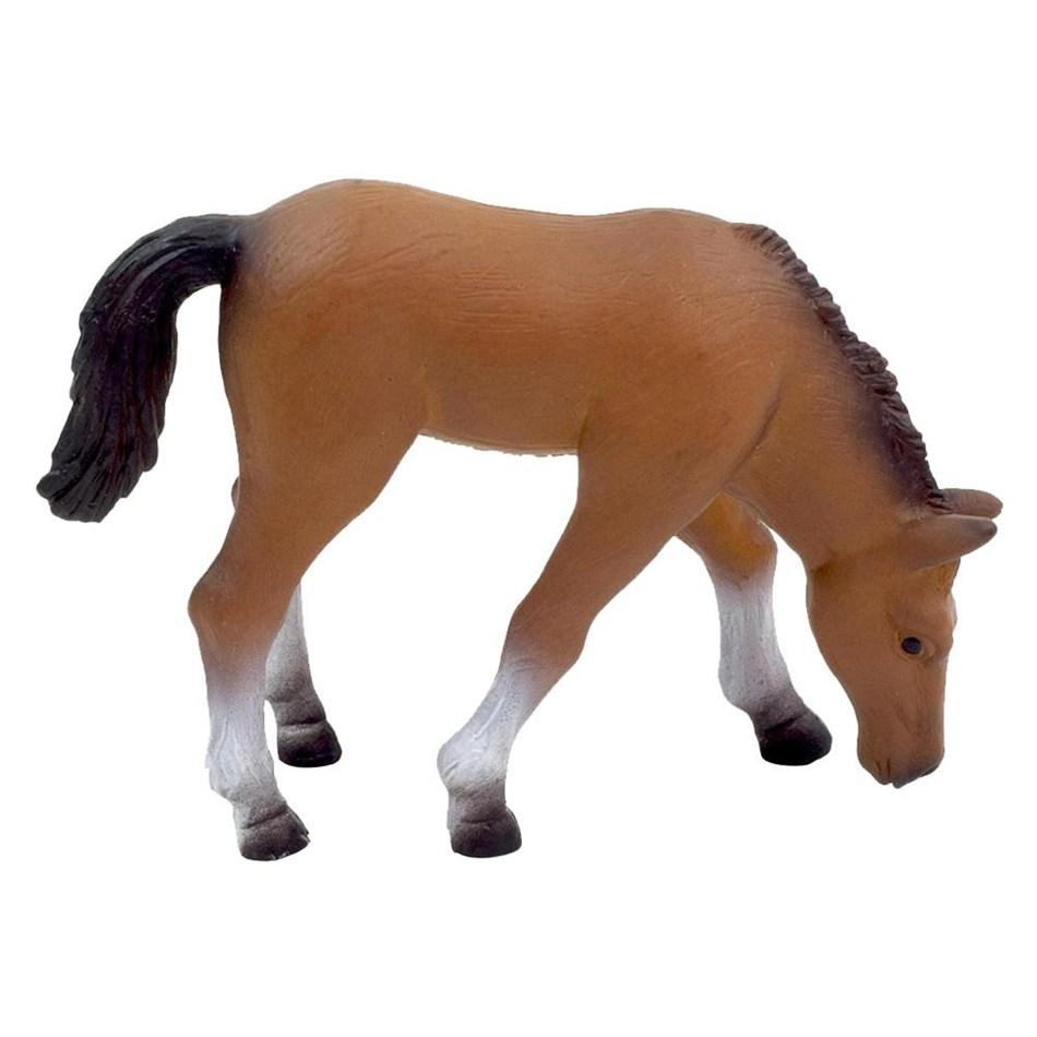 Mojo Arabian Foal Eating - na