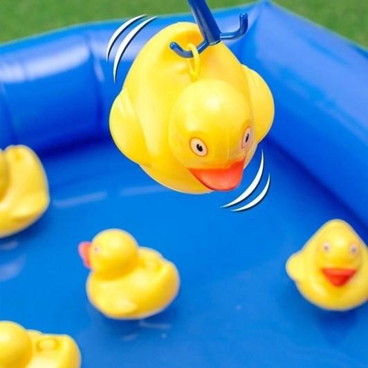Ridleys Hook A Duck