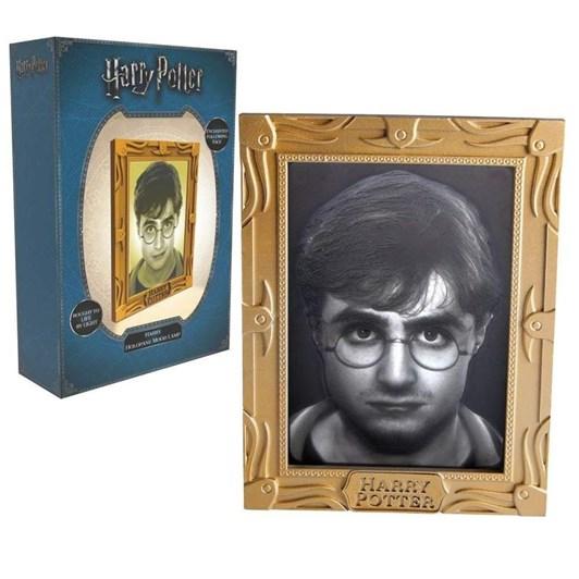 Harry Potter Holopane