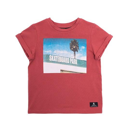 Rock Your Baby Skatepark Tshirt