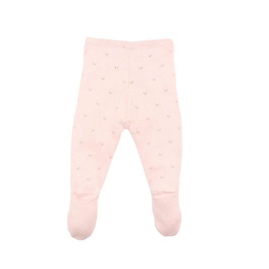 Bebe Penny Knit Leggings