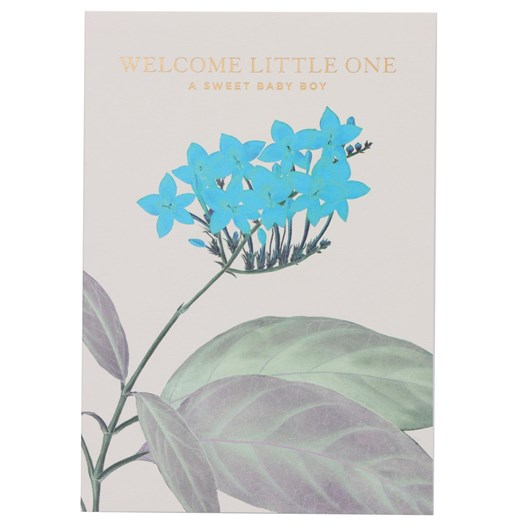 Oxted Baby - Welcome Little One A Sweet Baby Boy