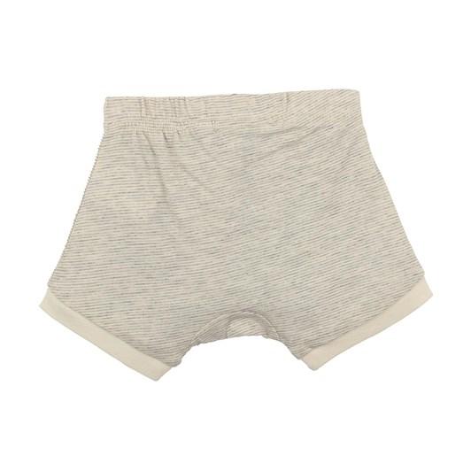 Bebe Jamie Stripe Shorts