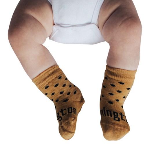 Lamington Socks Acorn Merino Wool Crew Socks NB-2Y