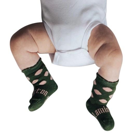 Lamington Socks Thyme Merino Wool Crew Socks NB-2Y