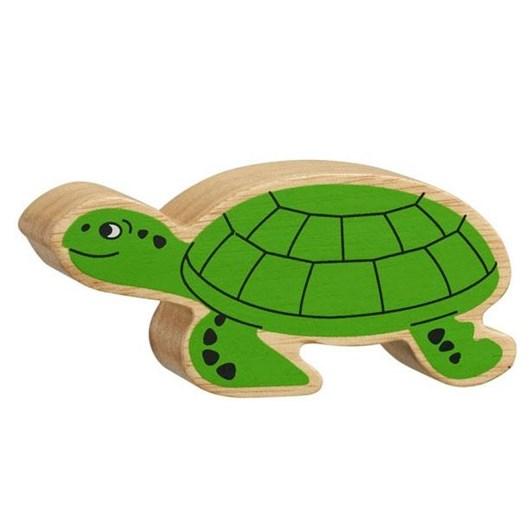 Lanka Kade Nc Sealife - Green Turtle