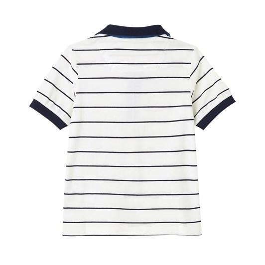 Joules Filbert Stripe Polo Shirt