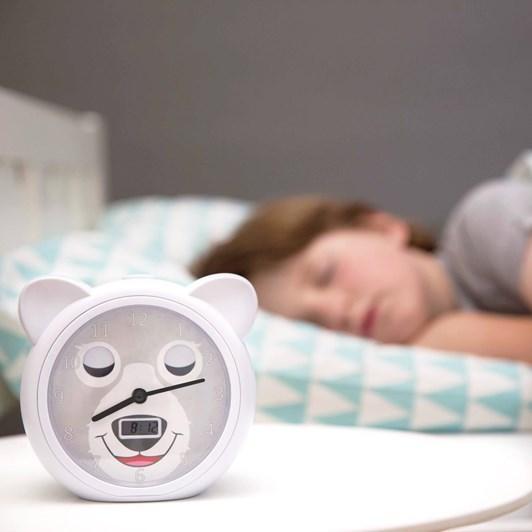 Zazu Bobby Sleeptrainer