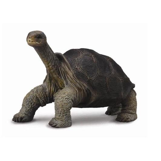 CollectA Pinta Island Tortoise George Figurine