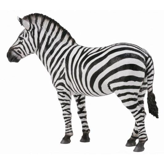 CollectA Zebra Common Figurine