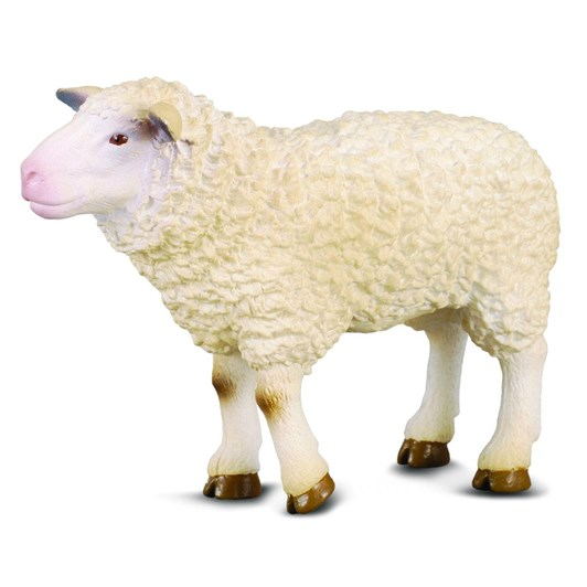 CollectA Sheep Figurine