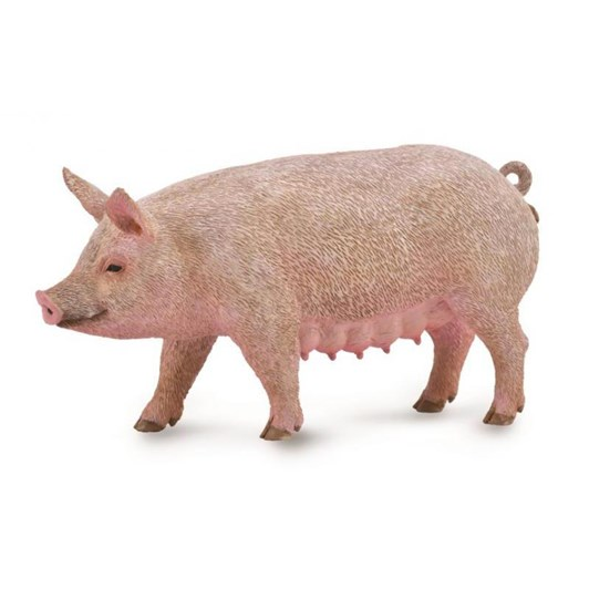 CollectA Sow Figurine