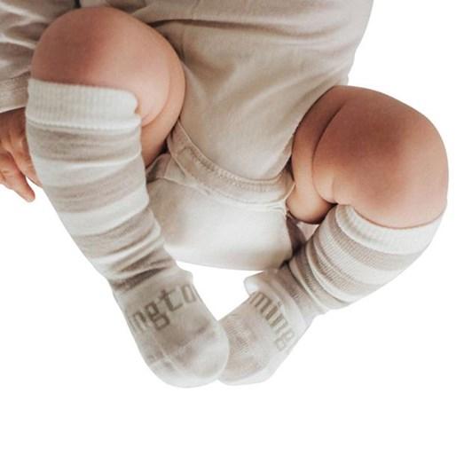 Lamington Socks Dandelion Merino Wool Knee High Socks NB-2Y