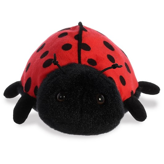 Antics Ladybug-Ladybird