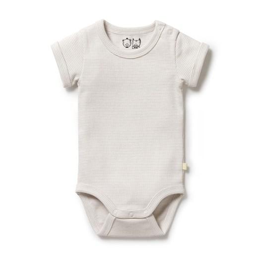 Wilson and Frenchy Organic Stripe Rib Bodysuit - Clay