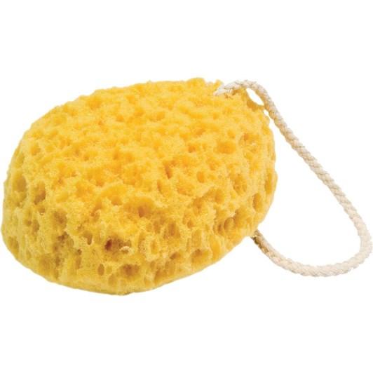 QVS Large Sea Sponge