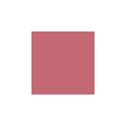 L'Oreal Paris Color Riche MFMN Lip 453 Rose Crm