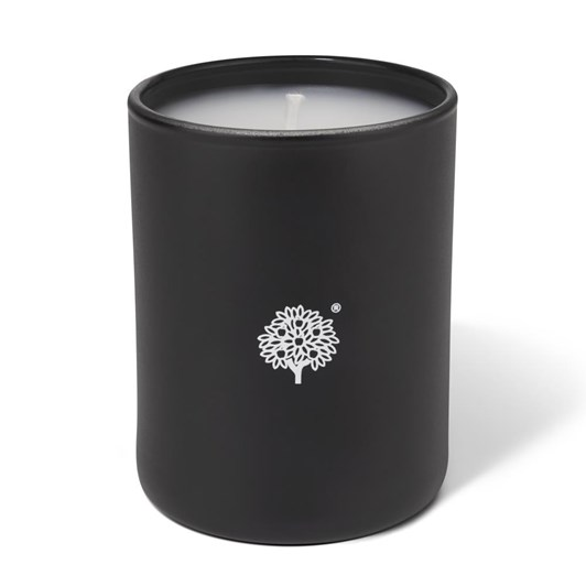 Crabtree & Evelyn Windsor Forest Mini Candle 67g