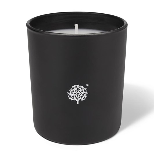 Crabtree & Evelyn Windsor Forest Large Poured Candle 200g