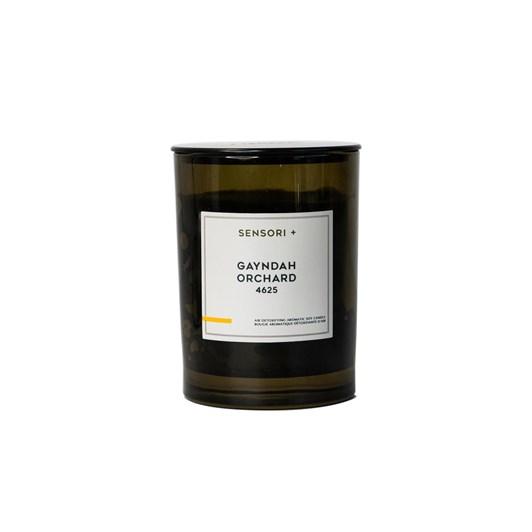 Sensori + Detoxifying Soy Candle Gayndah Orchard 260g