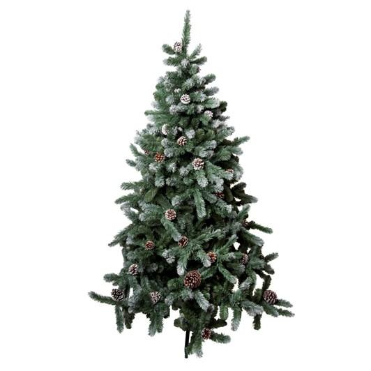 Glacier Fir Christmas Tree 6 Foot
