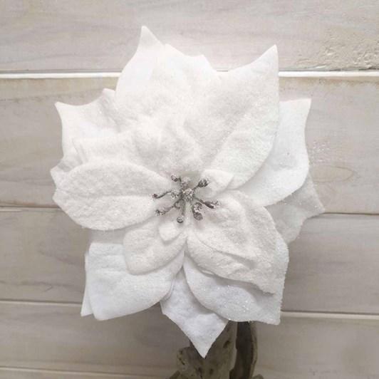 White Poinsettia With Glitter
