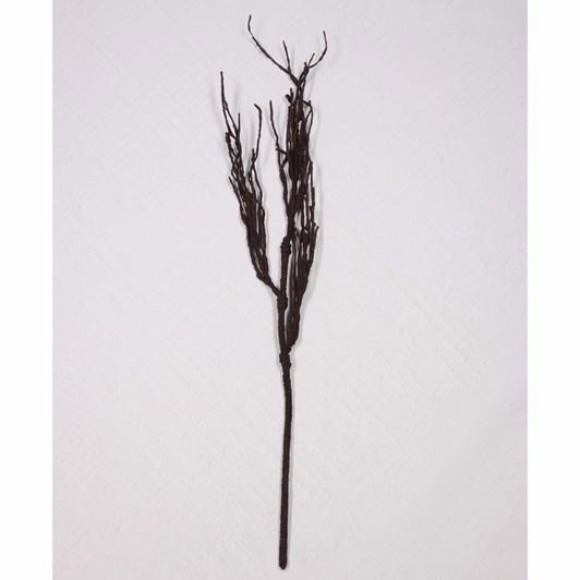 Branch Twig