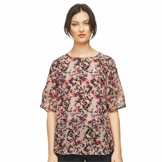 Verge Expression Top