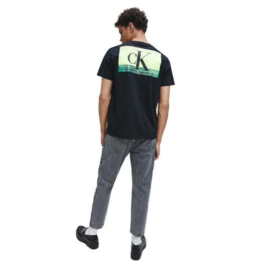 Calvin Klein Jeans FESTIVAL PHOTOPRINT MNS TE