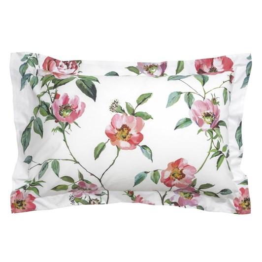 Wallace Cotton Rose Anna Oxford Pillowcase Set