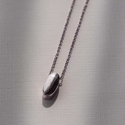 Love In A Jewel The Amavi Pendant (Silver) Plain