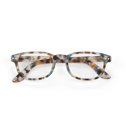 Izipizi: Reading Collection B - Blue Tortoise