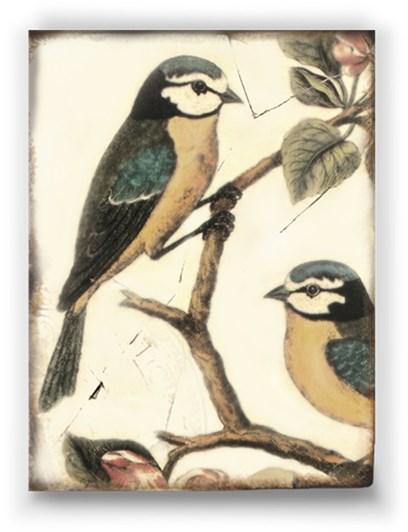 Sid Dickens Memory Block - Morning Birds