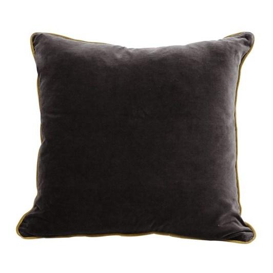 CC Interiors Black And Gold Velvet Cushion 50x50cm